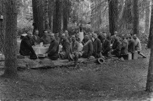 sequoias-558147_orig